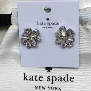♠️ Kate Spade New York Patina Cluster Earrings NWT